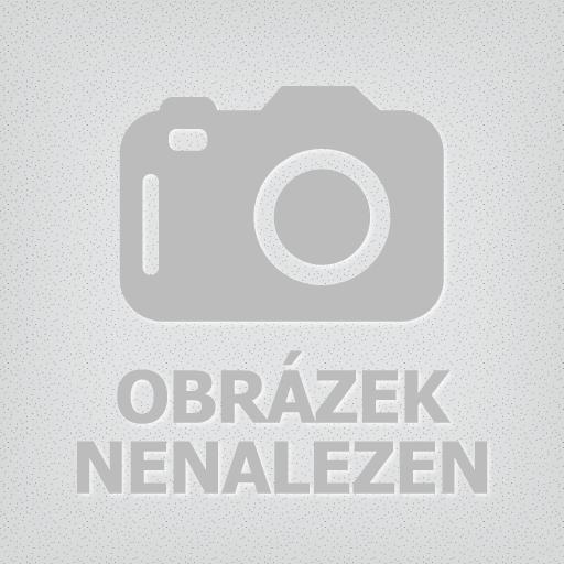 08/2011: Novostavba bytového domu v Praze